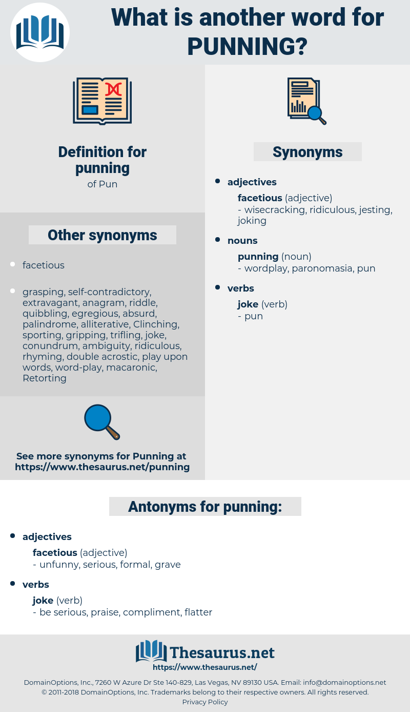 punning, synonym punning, another word for punning, words like punning, thesaurus punning