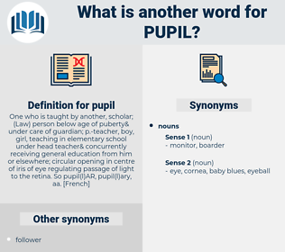 pupil, synonym pupil, another word for pupil, words like pupil, thesaurus pupil