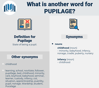 Pupilage, synonym Pupilage, another word for Pupilage, words like Pupilage, thesaurus Pupilage