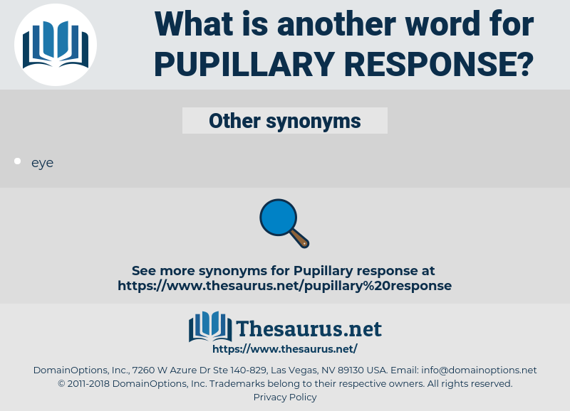 pupillary response, synonym pupillary response, another word for pupillary response, words like pupillary response, thesaurus pupillary response