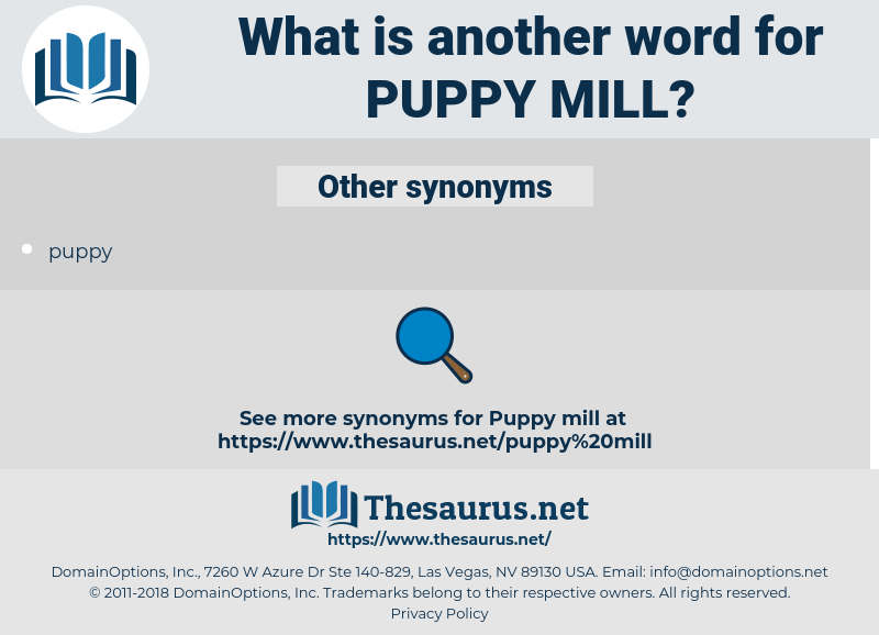 puppy mill, synonym puppy mill, another word for puppy mill, words like puppy mill, thesaurus puppy mill