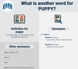 puppy, synonym puppy, another word for puppy, words like puppy, thesaurus puppy
