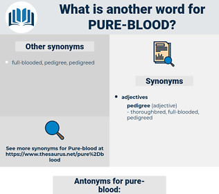pure-blood, synonym pure-blood, another word for pure-blood, words like pure-blood, thesaurus pure-blood