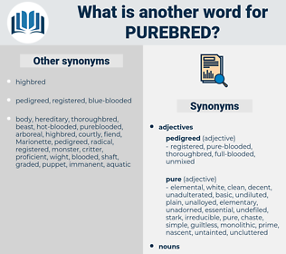 purebred, synonym purebred, another word for purebred, words like purebred, thesaurus purebred