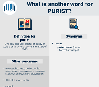 purist, synonym purist, another word for purist, words like purist, thesaurus purist