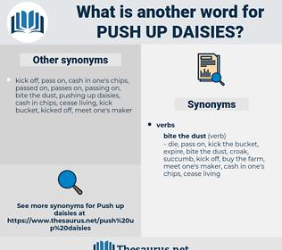 push up daisies, synonym push up daisies, another word for push up daisies, words like push up daisies, thesaurus push up daisies