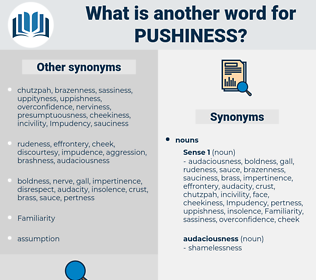pushiness, synonym pushiness, another word for pushiness, words like pushiness, thesaurus pushiness