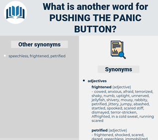pushing the panic button, synonym pushing the panic button, another word for pushing the panic button, words like pushing the panic button, thesaurus pushing the panic button