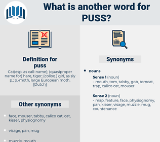 puss, synonym puss, another word for puss, words like puss, thesaurus puss