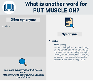 put muscle on, synonym put muscle on, another word for put muscle on, words like put muscle on, thesaurus put muscle on