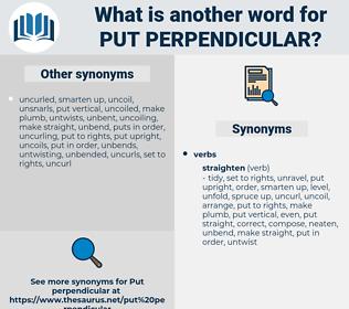 put perpendicular, synonym put perpendicular, another word for put perpendicular, words like put perpendicular, thesaurus put perpendicular