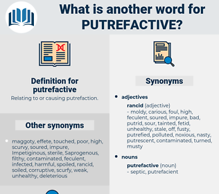 putrefactive, synonym putrefactive, another word for putrefactive, words like putrefactive, thesaurus putrefactive