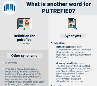 putrefied, synonym putrefied, another word for putrefied, words like putrefied, thesaurus putrefied