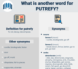 putrefy, synonym putrefy, another word for putrefy, words like putrefy, thesaurus putrefy