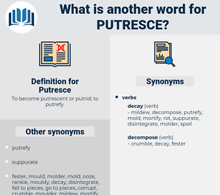 Putresce, synonym Putresce, another word for Putresce, words like Putresce, thesaurus Putresce