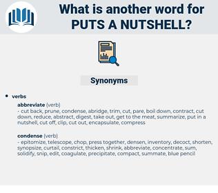 puts a nutshell, synonym puts a nutshell, another word for puts a nutshell, words like puts a nutshell, thesaurus puts a nutshell