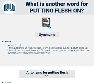 putting flesh on, synonym putting flesh on, another word for putting flesh on, words like putting flesh on, thesaurus putting flesh on