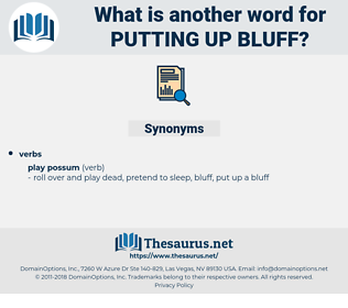 putting up bluff, synonym putting up bluff, another word for putting up bluff, words like putting up bluff, thesaurus putting up bluff