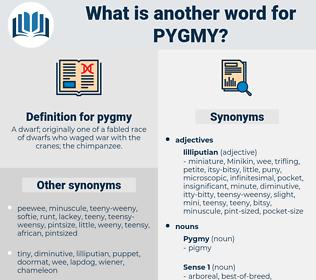 pygmy, synonym pygmy, another word for pygmy, words like pygmy, thesaurus pygmy