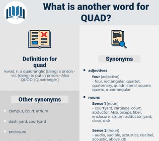 quad, synonym quad, another word for quad, words like quad, thesaurus quad