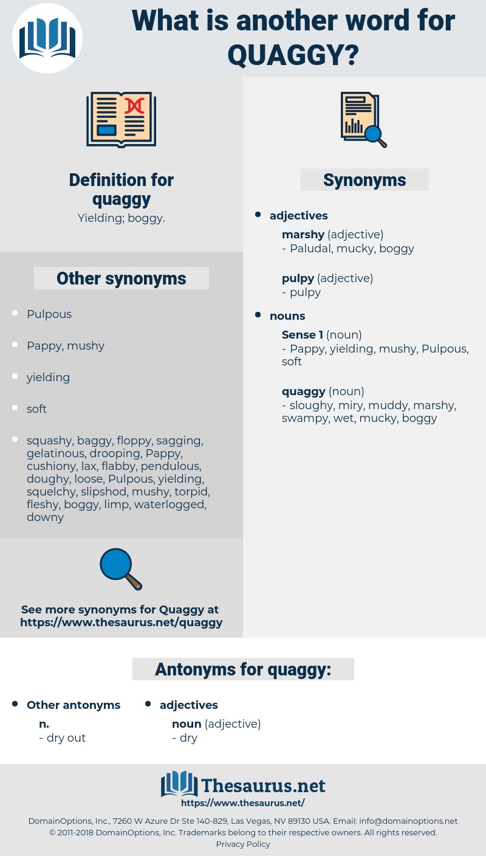 quaggy, synonym quaggy, another word for quaggy, words like quaggy, thesaurus quaggy