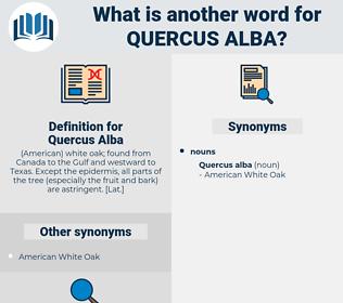 Quercus Alba, synonym Quercus Alba, another word for Quercus Alba, words like Quercus Alba, thesaurus Quercus Alba