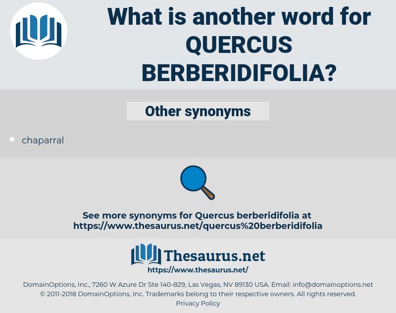 quercus berberidifolia, synonym quercus berberidifolia, another word for quercus berberidifolia, words like quercus berberidifolia, thesaurus quercus berberidifolia