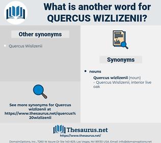 Quercus Wizlizenii, synonym Quercus Wizlizenii, another word for Quercus Wizlizenii, words like Quercus Wizlizenii, thesaurus Quercus Wizlizenii