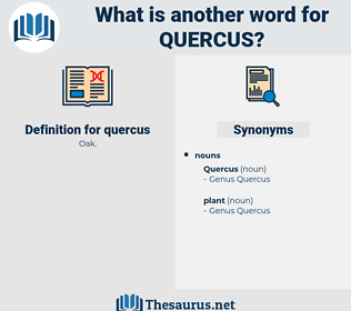 quercus, synonym quercus, another word for quercus, words like quercus, thesaurus quercus