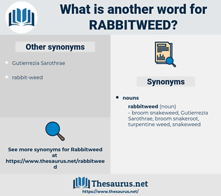 rabbitweed, synonym rabbitweed, another word for rabbitweed, words like rabbitweed, thesaurus rabbitweed