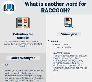 raccoon, synonym raccoon, another word for raccoon, words like raccoon, thesaurus raccoon