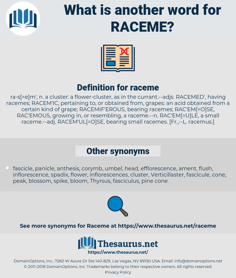 raceme, synonym raceme, another word for raceme, words like raceme, thesaurus raceme