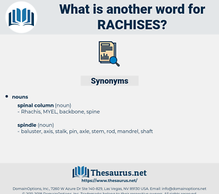 Rachises, synonym Rachises, another word for Rachises, words like Rachises, thesaurus Rachises