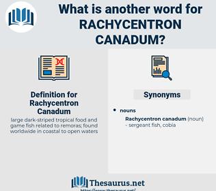 Rachycentron Canadum, synonym Rachycentron Canadum, another word for Rachycentron Canadum, words like Rachycentron Canadum, thesaurus Rachycentron Canadum