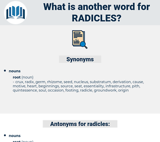 radicles, synonym radicles, another word for radicles, words like radicles, thesaurus radicles
