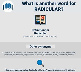 Radicular, synonym Radicular, another word for Radicular, words like Radicular, thesaurus Radicular