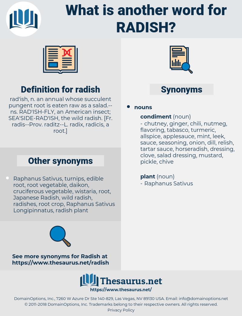 radish, synonym radish, another word for radish, words like radish, thesaurus radish