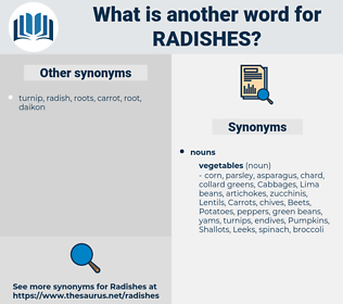 radishes, synonym radishes, another word for radishes, words like radishes, thesaurus radishes