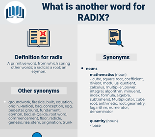 radix, synonym radix, another word for radix, words like radix, thesaurus radix