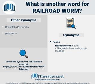 railroad worm, synonym railroad worm, another word for railroad worm, words like railroad worm, thesaurus railroad worm