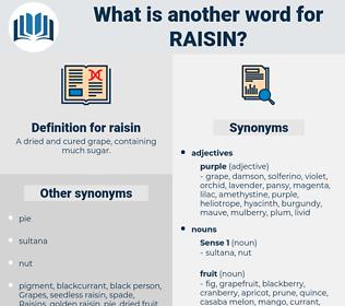raisin, synonym raisin, another word for raisin, words like raisin, thesaurus raisin