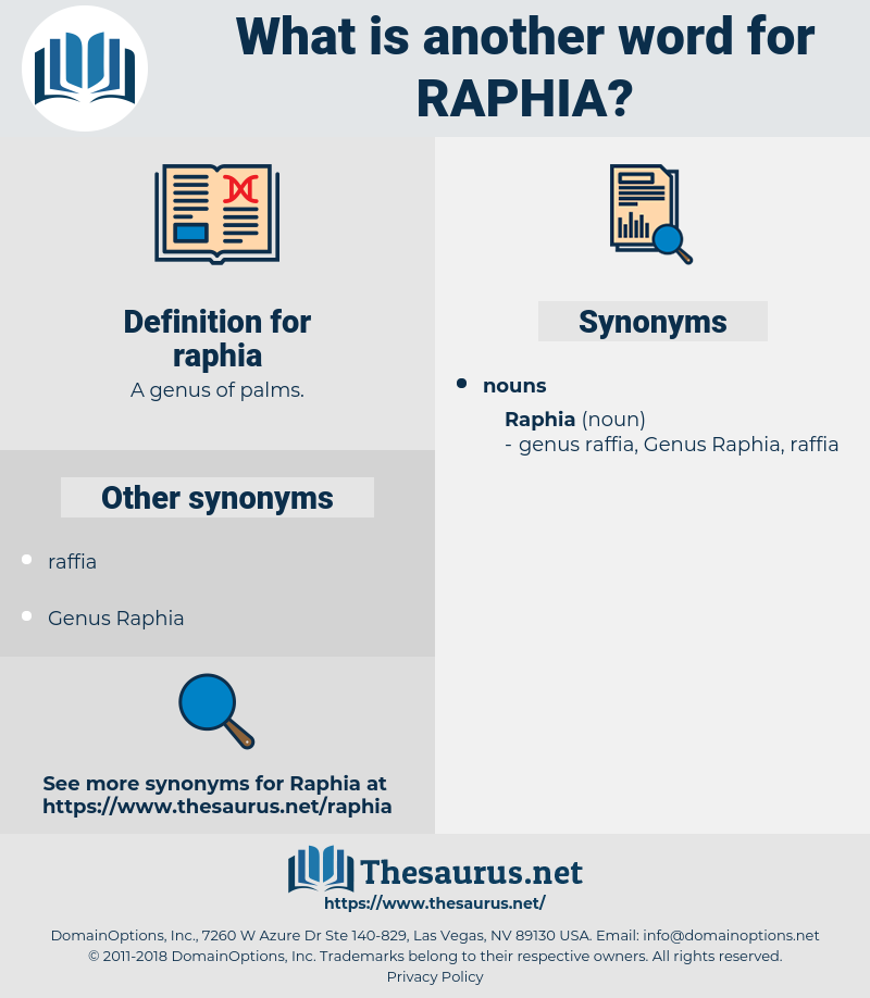 raphia, synonym raphia, another word for raphia, words like raphia, thesaurus raphia