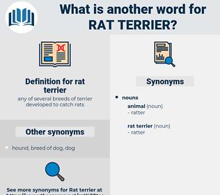 rat terrier, synonym rat terrier, another word for rat terrier, words like rat terrier, thesaurus rat terrier