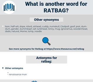 ratbag, synonym ratbag, another word for ratbag, words like ratbag, thesaurus ratbag