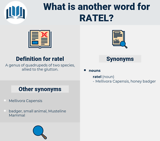 ratel, synonym ratel, another word for ratel, words like ratel, thesaurus ratel
