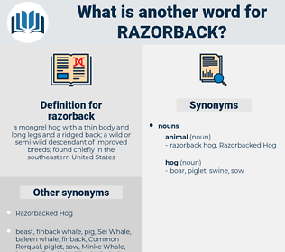 razorback, synonym razorback, another word for razorback, words like razorback, thesaurus razorback