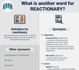 reactionary, synonym reactionary, another word for reactionary, words like reactionary, thesaurus reactionary