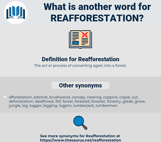 Reafforestation, synonym Reafforestation, another word for Reafforestation, words like Reafforestation, thesaurus Reafforestation
