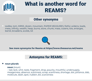 REAMS, synonym REAMS, another word for REAMS, words like REAMS, thesaurus REAMS