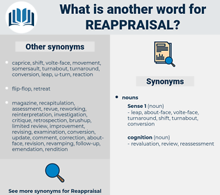 reappraisal, synonym reappraisal, another word for reappraisal, words like reappraisal, thesaurus reappraisal